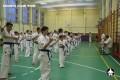 киокушинкай экзамены (10)