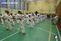 киокушинкай экзамены (13)