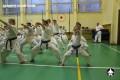 киокушинкай экзамены (15)