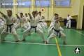 киокушинкай экзамены (16)
