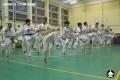 киокушинкай экзамены (35)