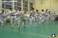 киокушинкай экзамены (36)