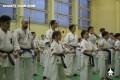киокушинкай экзамены (4)