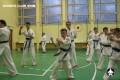 киокушинкай экзамены (7)