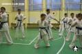 киокушинкай экзамены (9)