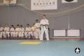 киокушинкай ката для детей (16)