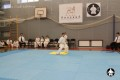 киокушинкай ката для детей (19)