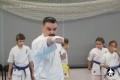 киокушинкай ката для детей (6)