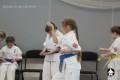 киокушинкай ката для детей (9)