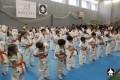 тренировки по каратэ в клубе СИН (3)