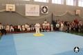 тренировки по каратэ в клубе СИН (7)