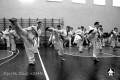 СИН клуб Киокушинкай (207)