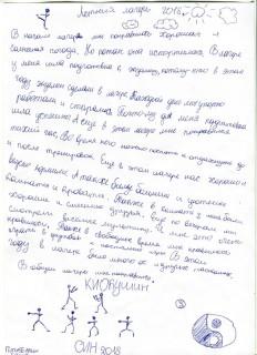 Летний лагерь СК СИН сочинения (13)