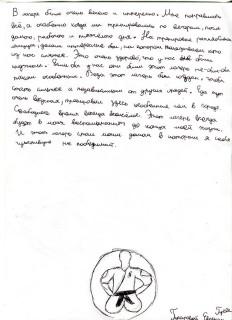 Летний лагерь СК СИН сочинения (22)