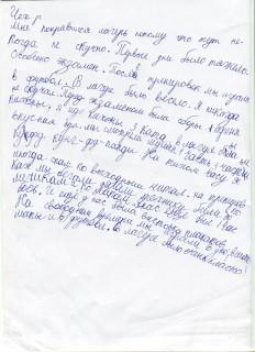 Летний лагерь СК СИН сочинения (28)