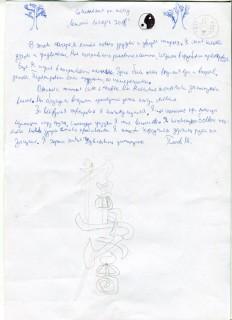 Летний лагерь СК СИН сочинения (34)