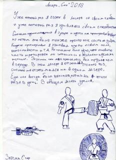 Летний лагерь СК СИН сочинения (37)