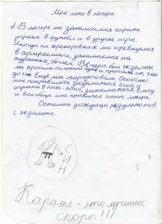 Летний лагерь СК СИН сочинения (38)