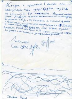 Летний лагерь СК СИН сочинения (43)