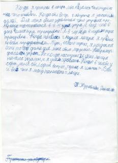 Летний лагерь СК СИН сочинения (48)