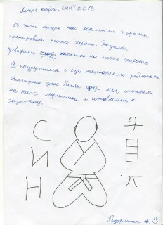 Летний лагерь СК СИН сочинения (52)