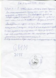Летний лагерь СК СИН сочинения (9)