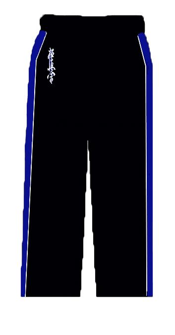 спортивные брюки черные